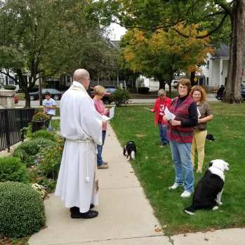 Fr. Tom blessing animals in the church courtyard, several dogs and their people.